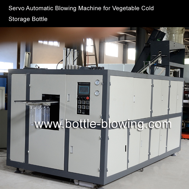 China Servo Full automatic PET  Blowing Machine for Vegetable Cold Storage Bottle